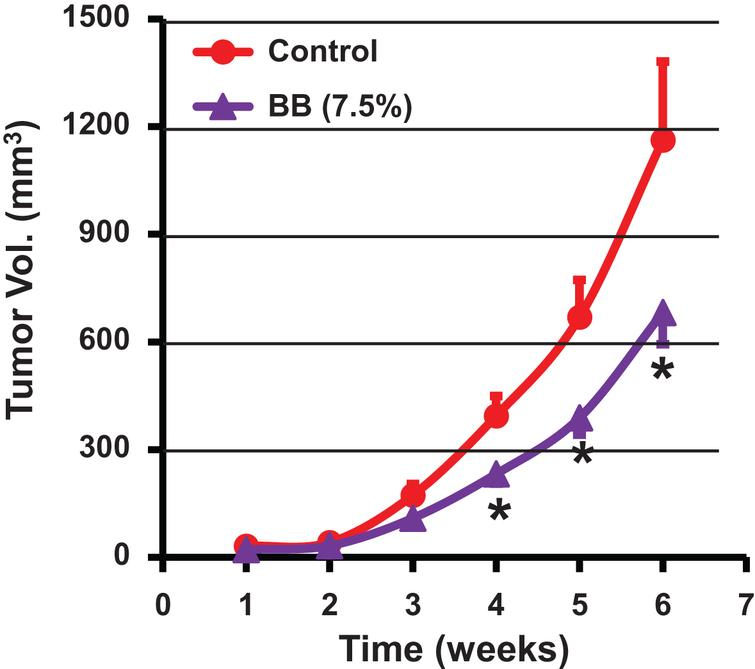 Antitumor activity of dietary blueberry (BB) powder against lung cancer tumor xenograft in nude mice. Animals were inoculated with human lung cancer H1299 cells (1.5 × 106 cells) and tumor volume was measured weekly until end of the study (6 weeks). Mice (n=9) were fed either a control diet (AIN 93M) or diet supplemented with blueberry powder (7.5% w/w). p value <0.05 was considered significant (two-tailed Student's t test).