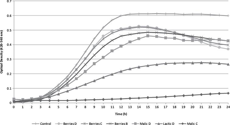 Listeria monocytogenes Scott A optical density turbidity growth curve measured using tryptic soy broth with yeast extract (TSB+YE) under different treatments (B, C, or D) with different acids (malic acid, lactic acid and blueberry extract) incubated at 25°C for 24h.