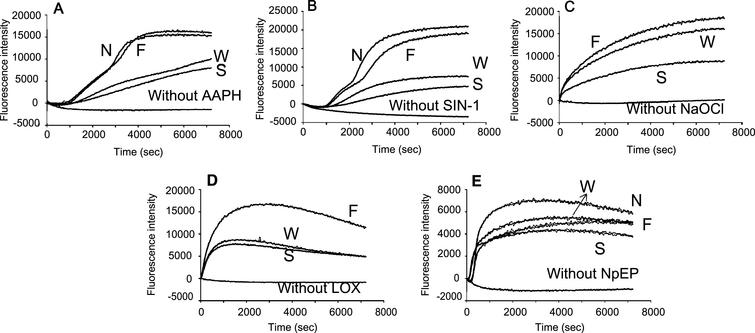 Inhibitory effects of blueberry extracts with water on the plasma oxidation (10%) induced by (A) AAPH (50 mM), (B) SIN-1 (0.5 mM), (C) NaOCl (0.5 mM), (D) 15-LOX (10000 nkat/mL), and (E) NpEP (5 mM). N: without extract; W, F, and S: Whole, fruit, and skin of blueberry respectively.