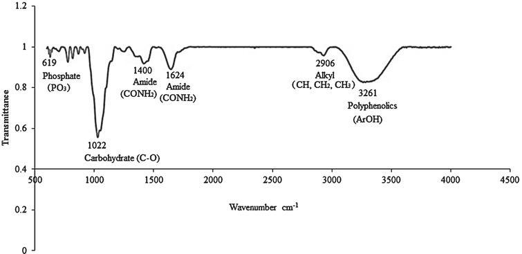 Infrared spectrum of C. sicyoides berries ethanolic extract.