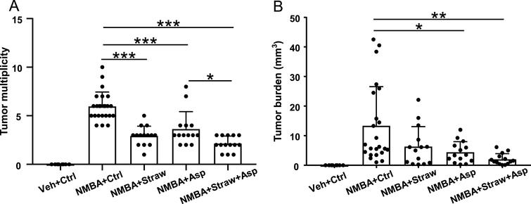 Strawberries and aspirin significantly suppressed esophageal tumor development. (A) All three study diets significantly reduced tumor multiplicity. Strawberries and aspirin in combination showed a stronger effect. (B) Tumor burden was significantly reduced by aspirin alone and the combined diet. *p< 0.05, **p< 0.01, ***p< 0.001.