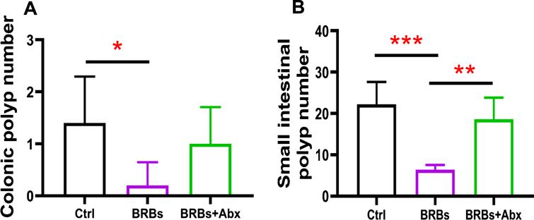 Gut bacteria are required for the benefits of BRBs in ApcMin/+ mice. BRBs significantly decreased the number of polyps in colon (A) and small intestine (B) of ApcMin/+ mice, but antibiotics abolished those BRB-mediated chemoprotective effects. Ctrl: control diet; Abx: antibiotics. n = 5 per group; * p < 0.05; ** p < 0.01; *** p < 0.001.