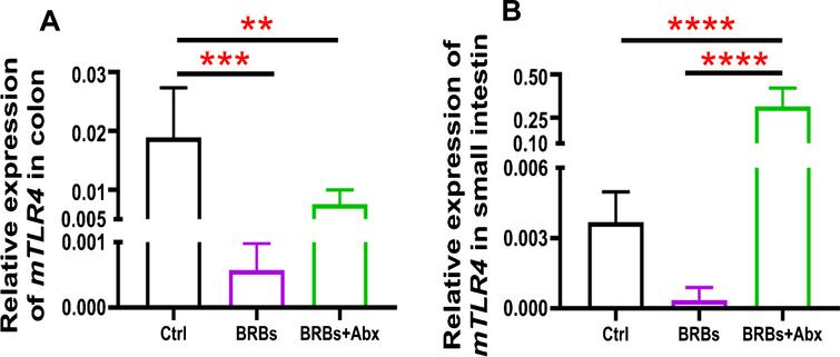mRNA expression levels of TLR4 in colon (A) and small intestine (B) of ApcMin/+ mice. Ctrl: control diet; Abx: antibiotics. ** p < 0.01; *** p < 0.001; **** p < 0.0001.