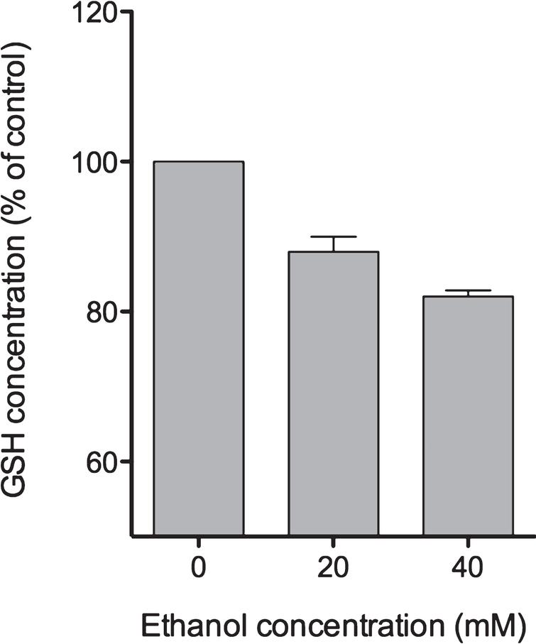 Short-term ethanol exposure reduces GSH levels. Twenty four hours after seeding of HepG2 cells into 6 well plates, medium was changed and cells were exposed to different ethanol concentrations for 1 hour, as indicated. Thereafter, cells were harvested and processed for fluorometric detection of GSH levels as described in Materials and Methods. GSH concentrations are depicted as % of control (no ethanol treatment). Data are expressed as mean±SD of three independent experiments performed in triplicates.