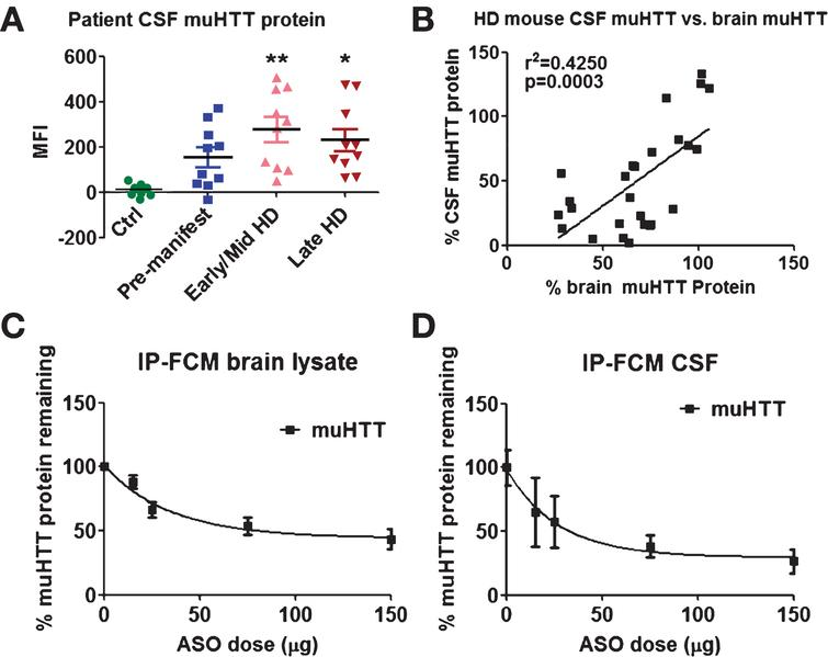 CSF mHTT positively correlates with brain levels after treatment of 