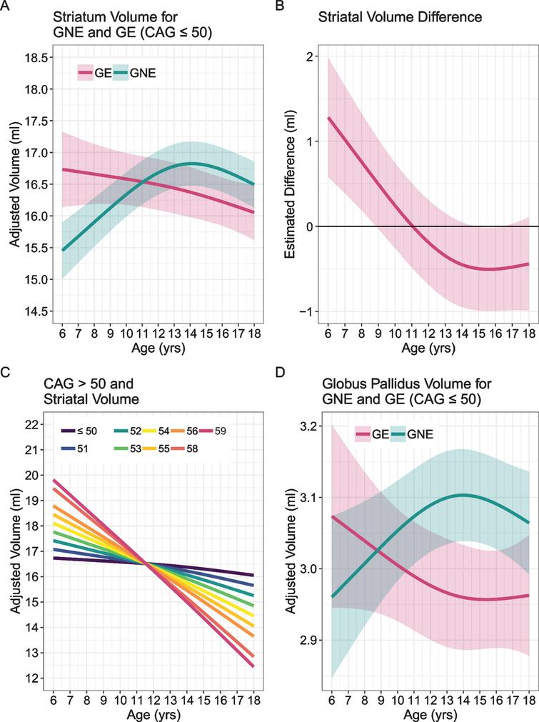 A) Mean estimated age-dependent change of striatal volume in the GE (red) and GNE (green) groups. Note that the GE curve is based on individuals with CAG < 50, and that results were averaged across sex. B) Striatal volume diference (y-axis) between GE group (red) and GNE group (horizontal black line) across age (x-axis), along with 95% confidence limits of the difference scores. C) The impact of CAG repeat length on striatal volume (y-axis) across age (x-axis). CAG repeats <50 did not affect striatal growth curves (horizontal line labeled <50). For repeats >50, additional repeats were associated with accelerated striatal decline in adolescence, and possibly with greater hypertrophy before age 10. D) Mean estimated age-dependent change of the globus pallidus.