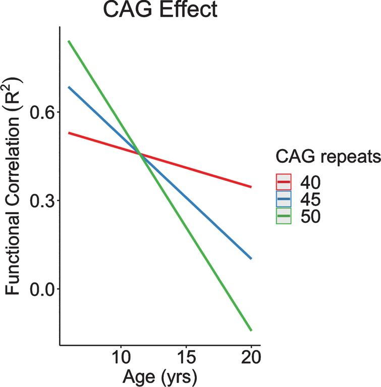 CAG effect over time in functional correlations between anterior lobe of the cerebellum and subthalamic nucleus. CAG, cytosine-adenine-guanine.