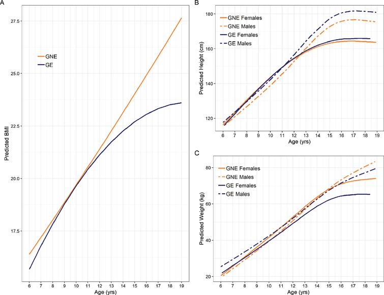 Trajectories of anthropometric growth as a function of gene status and sex. Panel A shows predicted curves for BMI trajectories for GNE (orange) and GE (blue). Note that the mean male and female trajectories are shown, as there was no significant interaction between groups and sex. Panel B illustrates predicted height trajectories across groups and sex, where females are represented by solid lines and males are represented by dashed lines. GE males were significantly taller than their GNE counterparts, while females exhibited similar height across groups. Panel C shows growth curves for weight. GE females weighed less than their GNE counterparts. Weight in males was similar across groups.