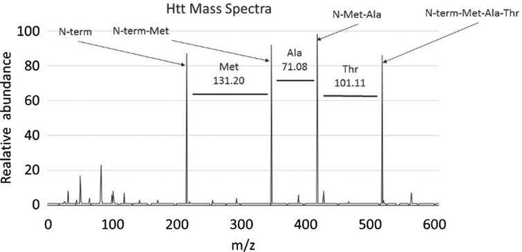 Determining peptide composition using mass references values. This graph shows an example mass spectrum with intensity graphed on the y-axis and Mass/Charge (m/z) ratio graphed on the x-axis. In this case the first 3 amino acids of the HTT protein, methionine, alanine, and threonine are deducted from the graph by determining the change in mass between each peak and referring to Table 1. Charted here is the first three amino acids of the HTT peptide (MATLEKLMKA . . .).