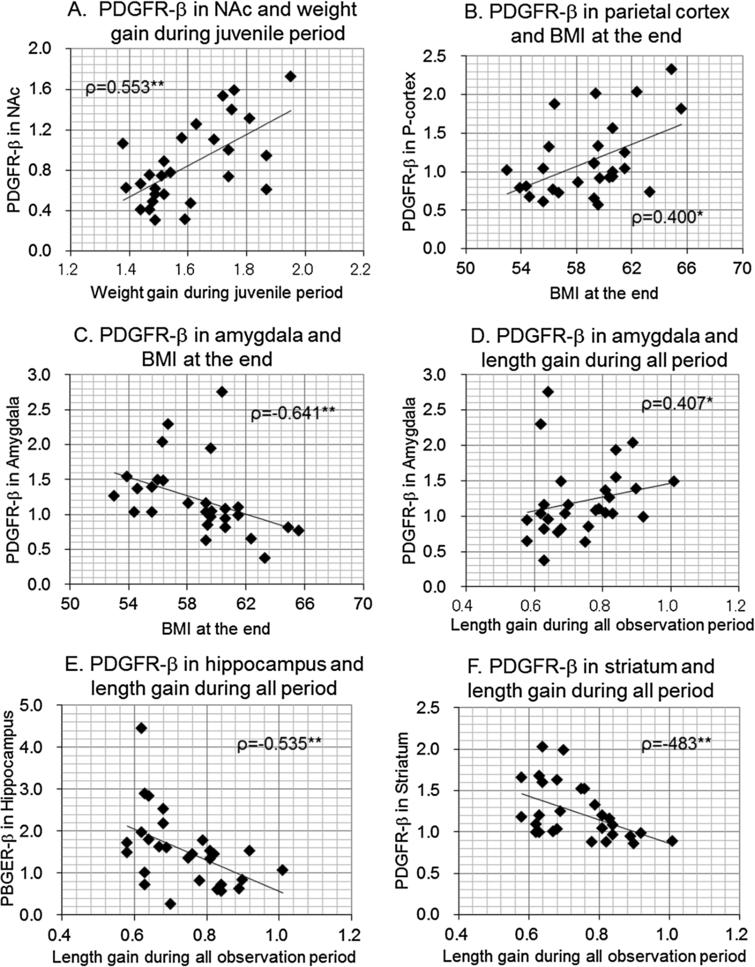 Scatterplots between body size gains or BMI and brain PDGFR-β levels in male offspring. Correlation coefficients (Spearman's ρ) were shown with p-values. ∗p<0.05, ∗∗p<0.01.