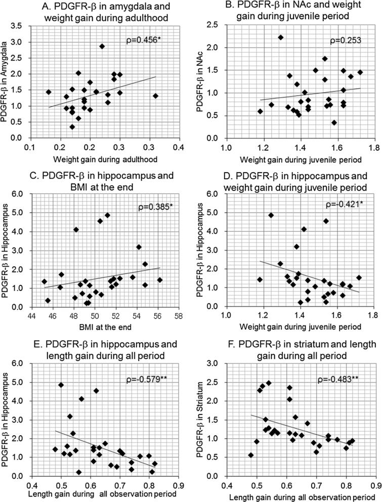 Scatterplots between body size gains or BMI and brain PDGFR-β levels in female offspring. Correlation coefficients (Spearman's ρ) were shown with p-values. ∗p<0.05, ∗∗p<0.01.
