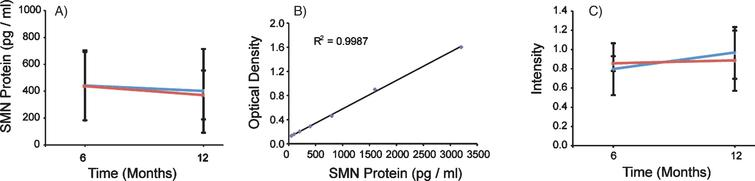 SMN protein concentrations in PBMCs were not altered in the presence of VPA or Placebo. SMN protein was measured using the SMN ELISA and absorbance values were extrapolated from the provided standard curve. A) Both Group 1 and Group 2 mean SMN protein levels were calculated by visit, and 13 and 18 subjects respectively. Group 1 (VPA/Placebo) had mean SMN protein concentrations of 442.8 (±260.7) pg per ml of total protein to 402.39 (±311.5) pg/ml of total protein. Group 2 (Placebo/VPA) had similar concentrations of SMN protein, 438.1 (±254.3) to 372.2 (±182.1) pg/ml of total protein, p >  0.05. B) Representative standard curve from one of the four plates ran for this experiment. Purified SMN protein was loaded on the plate by a serial dilution from 50 pg/ml to 3200 pg/ml, these concentrations correspond to optical densities yielding a linear regression with an r2 value of 0.9987. C) SMN Cell Immunoassay. SMN protein concentrations were standardized by taking a ratio of SMN protein to that of an endogenous protein control, Y12. Group 1 (VPA/Placebo) had an N of 9 and the mean ratios of SMN/Y12 were 0.796 (±0.077) to 0.965 (±0.313) Group 2 (Placebo/VPA) had a 0.965 (±0.313). Group 2 (Placebo/VPA) had an N of 12 and the mean ratios of SMN/Y12 were 0.854 (±0.269) to 0.884 (±0.268), p >  0.05.