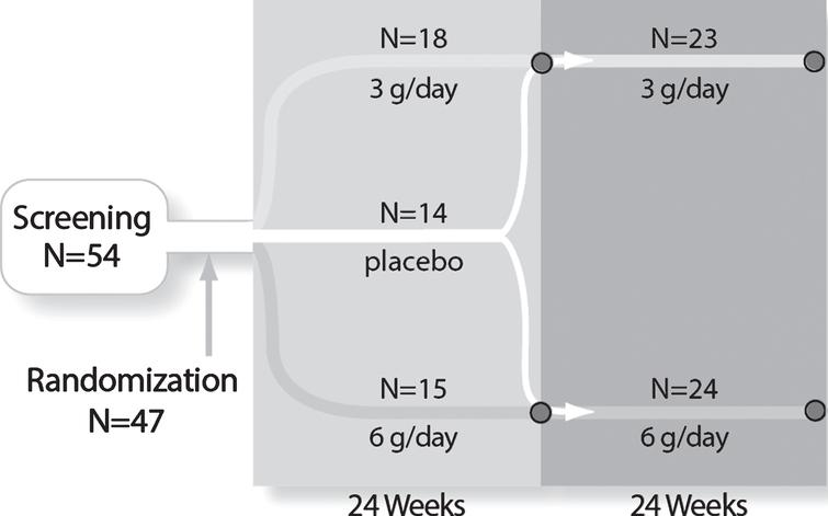 Study design and subject disposition. The randomized, double-blind, controlled study design and subject flow are shown. After stratification and randomization, the three groups received 24 weeks of treatment. At Week 24, 9 placebo subjects crossed over to 6 g/day to form a 24 subject combined 6 g/day group and 5 placebo subjects crossed over to the 3 g/day group to form a 23 subject combined 3 g/day group. The combined groups received an additional 24 weeks of treatment for a total of 48 weeks of exposure.