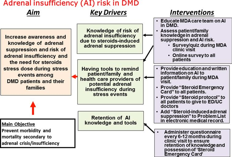 Key drivers for our quality-improvement project. Shown is the learning structure including the aim statement, key drivers, and the intervention strategies to be implemented to increase awareness of adrenal suppression and risk of adrenal insufficiency or adrenal crisis. The key drivers are the elements believed to be crucial for achieving the aim.