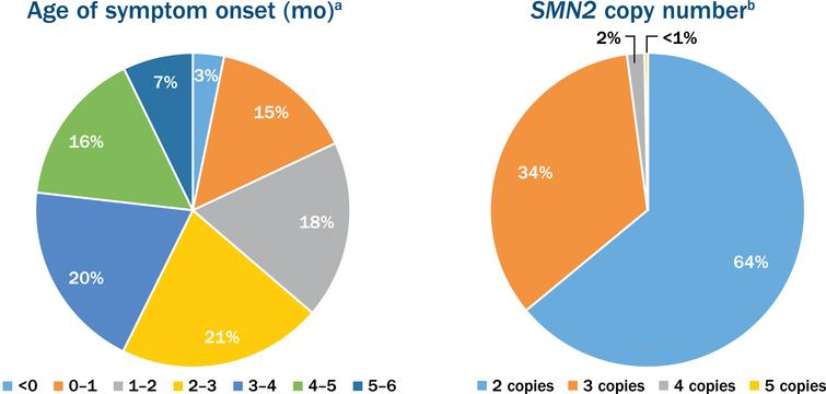 Age of symptom onset and the survival motor neuron 2 (SMN2) copy number in participants enrolled in the nusinersen expanded access program. aOut of the 776 participants with age of onset of symptoms ranging from 0 to 6 months. bOut of the 381 participants who reported SMN2 copy number.