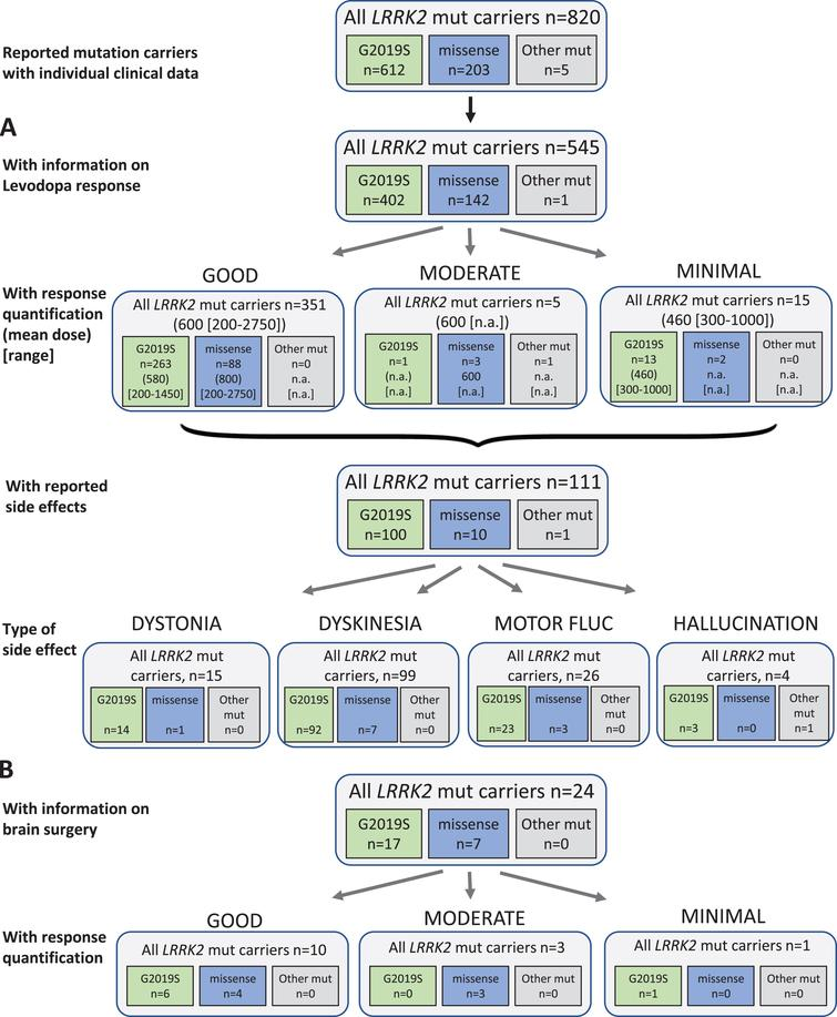 Results of the systematic literature review for LRRK2 mutation carriers. A) The chart shows information on carriers of LRRK2 mutations with levodopa treatment, respective response and side effects, subdivided by the most frequent mutations. B) Information on brain surgery and response.