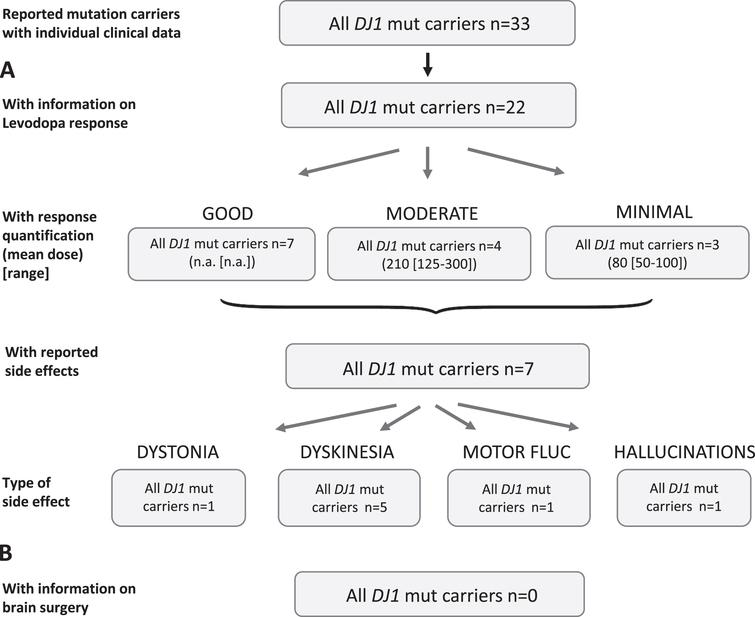 Results of the systematic literature review for DJ1 mutation carriers. A) The chart shows information on carriers of DJ1 mutations with levodopa treatment, respective response and side effects. Due to the low number of recurrent mutations, no subdivision for the most frequent mutations has been included. B) No patient with brain surgery has been reported.