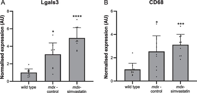 Inflammation. Expression of (A) Lgals3 and (B) CD68 in the diaphragm of 24-week old mice after 12 weeks of simvastatin treatment (n=10–12). *p<0.05, ***p<0.001, ****p<0.0001 compared to wild type mice.