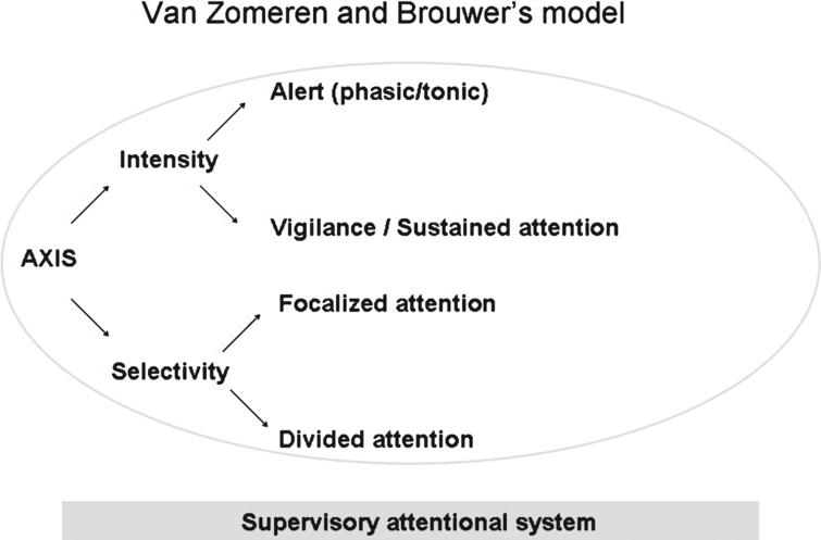 Attentional modalities schematised.