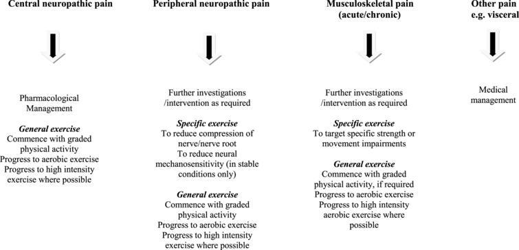 Integration of exercise prescription for pain in Parkinson's disease.
