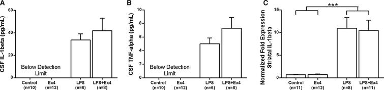 (A-B) The levels of cytokines in CSF (pg/mL). The LPS-treated rats exhibited higher levels IL-1β (A) and TNF-α (B), but exendin-4 treatment had no effect on cytokine levels (Student's t-tests, NS). Non-LPS treated rats were below detection limit. CSF from six animals were not used because of insufficient amounts (n = 1 [Control], n = 2 [LPS], n = 3 [LPS+Ex4]). (C) The mRNA expression of IL-1β in the striatum. The IL-1β expression was higher in LPS treated rats but was not affected by exendin-4 treatment (two-way ANOVA, LPS effect, F(1,38) = 44.04, p < 0.001). Bars represent the mean±SEM, ***p < 0.001.