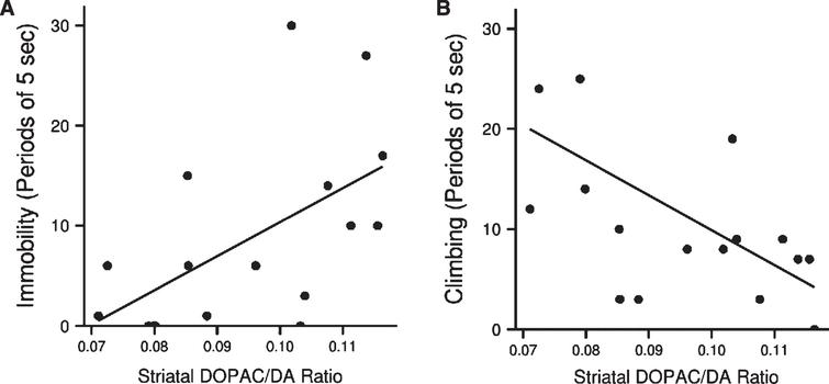 (A) Association between dopamine turnover in striatum of LPS treated animals and immobility (Spearman's rho = 0.6, p < 0.05, n = 17) and (B) climbing (rho = – 0.7, p < 0.01, n = 17) in the forced swim test.