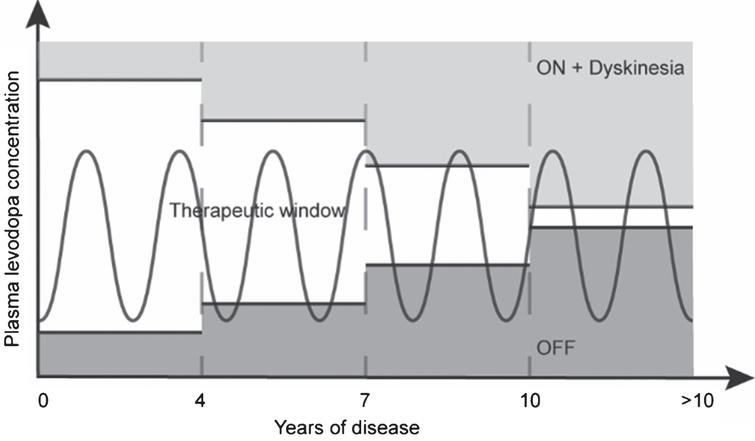 Pattern of motor response to levodopa during the progression of PD. Early in the disease, levodopa response is optimal, reaching the therapeutic window. As the disease progresses, this therapeutic window decreases due to changes in exogenous dopamine management by remaining neurons. After approximately seven to ten years, this therapeutic window becomes less attainable, leaving the patient in either an OFF or ON with dyskinesia condition. Inspired by Cenci [11] and Jankovic [12].