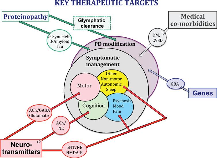 Neurotransmitter systems, proteonopathies, genes, CNS co-pathologies and medical co-morbidities all contribute to the clinical expression of the PD syndrome and may provide key therapeutic targets for symptomatic control of clinical symptoms and/or clinical disease modification.