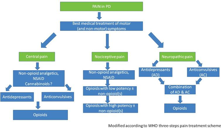 Algorithm suggested for pain therapy in PD.