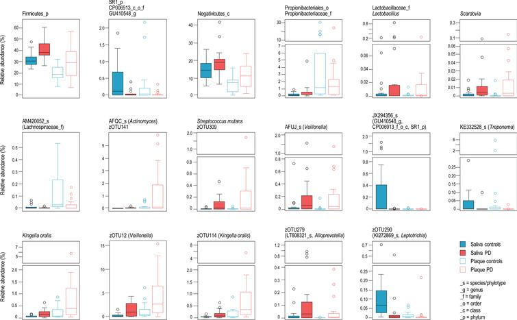 Bacterial taxa significantly different in abundance between patients and controls in both saliva and dental plaque.