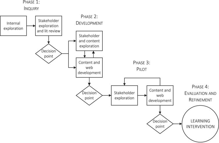 The phases, processes, and decision points of the Diversity Partners intervention development.