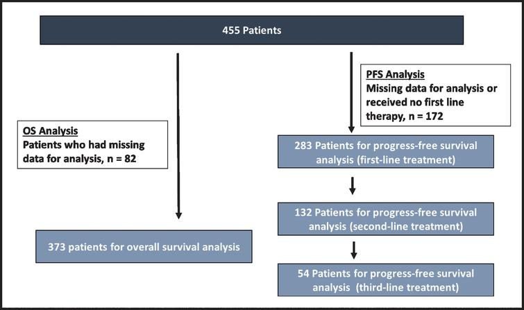 Consort diagram of study cohort analyzed for progression free survival.