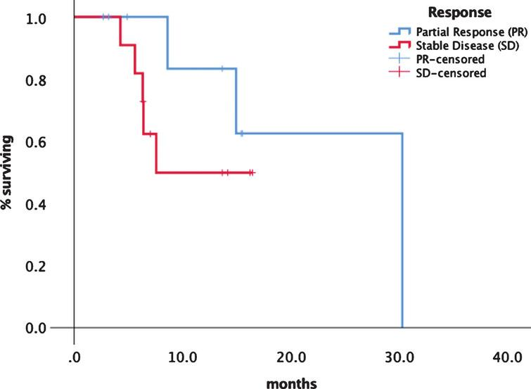 Progression free survival depending on response category PR vs. SD.