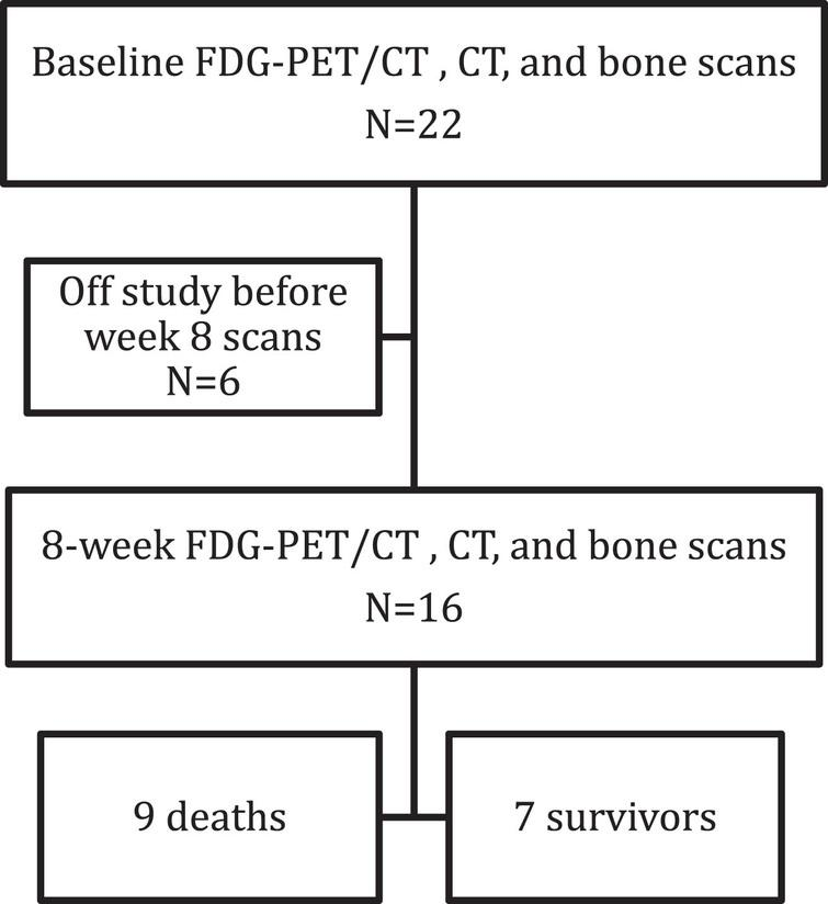 Flowchart of patients included in the study.