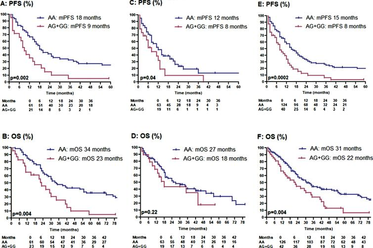 Kaplan-meier estimates for progression-free survival and overal survival in patients treated with first-line sunitinib: panel A + B: discovery cohort. panel C + D: validation cohort. panel E + F: total cohort.