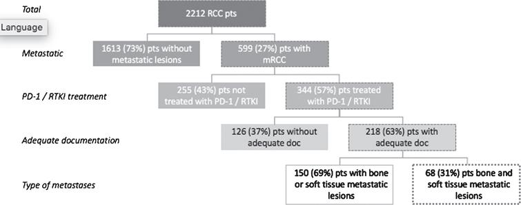 Inclusion and exclusion criteria applied to renal cell carcinoma (RCC) patient database. Adequate documentation (doc) refers to measurable metastases documented at baseline and at one or more follow-up time points. (mRCC, metastatic renal cell carcinoma; PD-1, programmed death-1; pts, patients; RTKI, receptor tyrosine kinase inhibitors).
