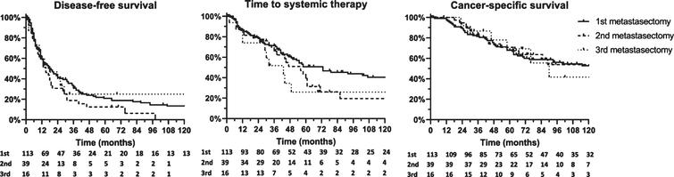 Outcomes after first, second and third metastasectomy.