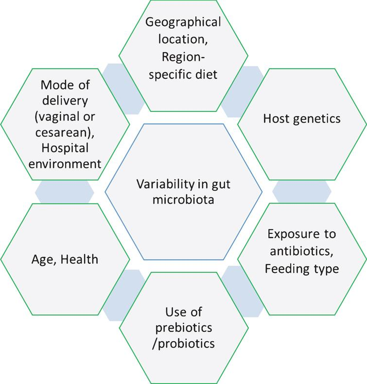 Factors responsible for inducing the variability in the human gut microbiota.