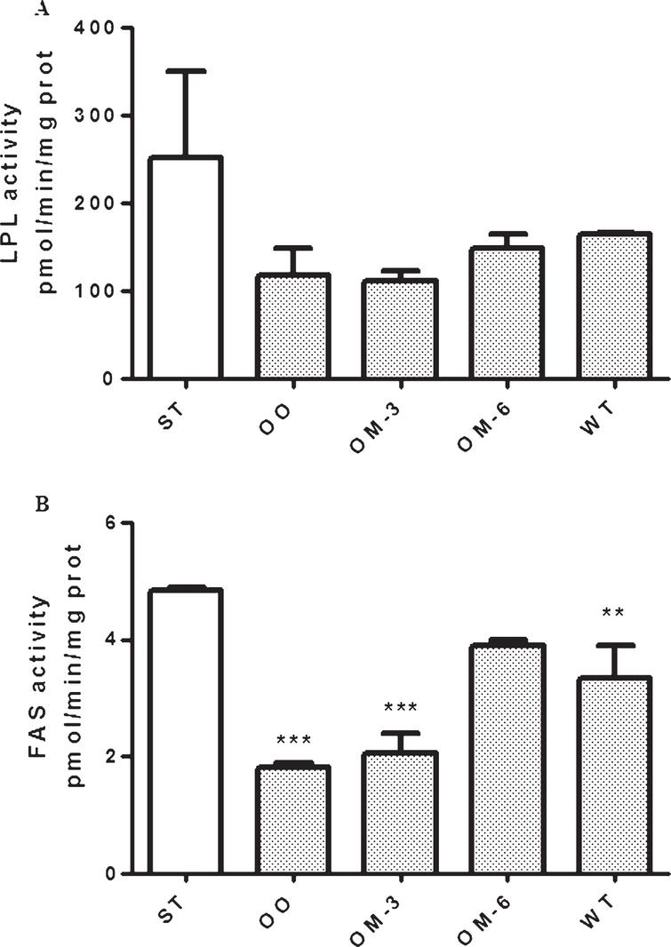 LPL (panel A) and FAS (panel B) enzymatic activity in adipose tissue from ApcMin/+ mice treated groups (ST=standard diet; OO=olive oil; OM-3=omega-3 PUFAs; OM-6=omega-6 PUFAs supplemented diet) and in the Wilde Type (WT) mice group. Data are presented as the mean±SE of ten animals for each group and expressed as pmol/min/mg total protein. **P<0.03, ***P<0.005 (one-way analysis of variance and Dunnett Post Test).