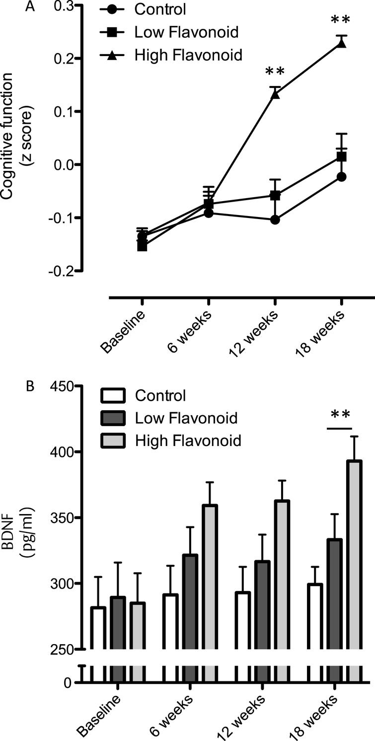 Influence of fruit and vegetable intake on  cognition and BDNF. (A) Time-course of changes in cognitive function following consumption of high flavonoid  F&Vs; low flavonoid F&Vs; and after following habitual diet (Control). Data were analyzed using two-way  repeated measures ANOVA with time and treatment as the two factors (significant effect of time  (p = 0.003), treatment (p = 0.069) and an interaction (p = 0.033) between dietary  intake and cognitive performance. Post hoc analysis, (Bonferroni) indicated significantly greater  cognitive performance at both 8 (***p < 0.001) and 12 weeks  (**p < 0.01), relative to both habitual diet (control) and LF F&V intake. (B) Impact of  fruit and vegetable intake on serum BDNF levels. A two way ANOVA with repeated measures indicated significant  time (p = 0.008), treatment (P < 0.005) and an interaction (p = 0.026) between serum  BDNF and dietary intake across the 12 weeks. Post hoc analysis indicated a significantly higher serum BDNF  level at 12 weeks in the HF F&V group, relative to the habitual diet (control) group  (**p < 0.001). Details of the high and low classification of F&V are outlined in the  Materials and Methods section. All data are plotted as mean values±SEM (n = 112).