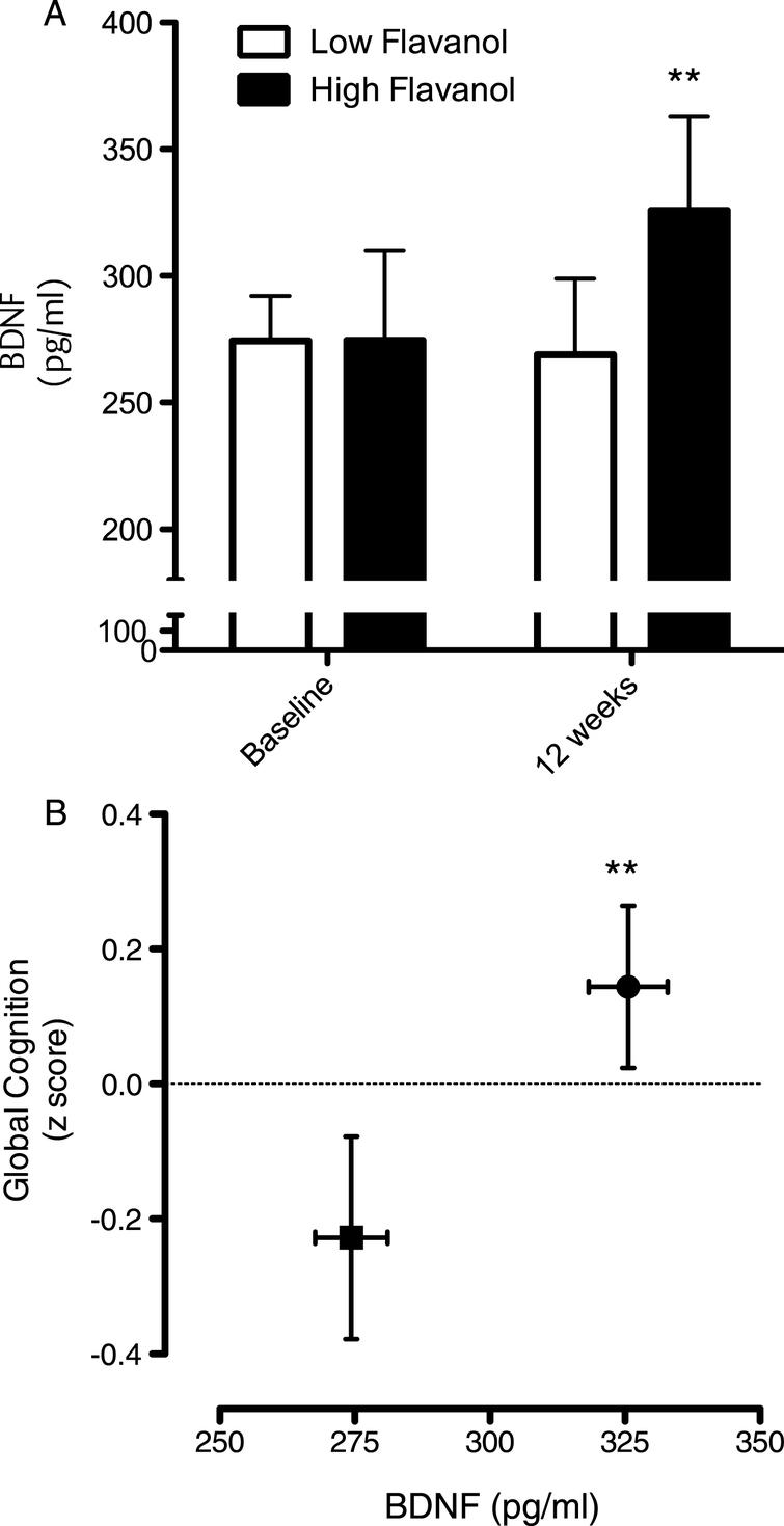 Influence of cocoa flavanol intake on cognition and serum BDNF. (A) Intake of cocoa flavanols for 12 weeks led to a significant increase serum BDNF levels, relative to the low flavanol cocoa intervention (**p < 0.01). (B) Impact of cocoa flavanol intake on global cognition function, plotted with serum BDNF levels (Baseline: ν= 40; 12 weeks). Cognitive performance was significantly greater (**p < 0.01) following high flavanol intake relative to the low flavanol control. All data are plotted as mean values±SEM (n = 40).