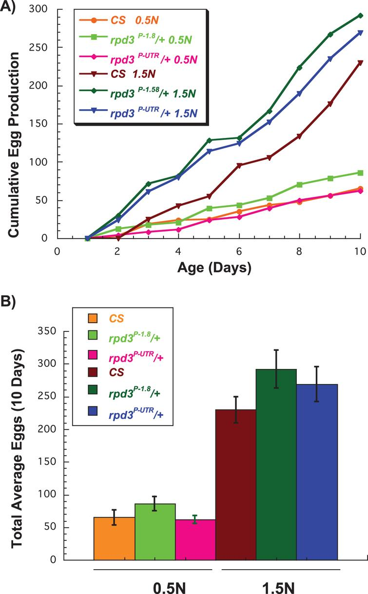 Effect of rpd3 reduction on fly fecundity. (A) The average number of eggs per day laid by wild type Canton-S (CS), rpd3P-UTR/CS, and genetic controls rpd3P-1.8/CS on 0.5 N and 1.5 N diets. (B) The total number of eggs per 10 day period laid by CS, rpd3P-UTR/CS, and rpd3P-1.8/CS on 0.5 N and 1.5 N diets. rpd3P-UTR/CS flies laid similar numbers of eggs on 1.5 N but lower numbers on 0.5 N compared to the controls, a difference that did not reach significance (p = 0.053). 10 vials with a single male and a single female were used per genotype and diet.