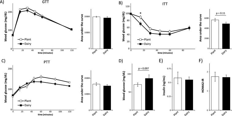 Mice consuming plant or dairy protein diets have similar control of blood glucose. (A-C) Glucose (A), insulin (B) and pyruvate (C) tolerance tests on male C57BL/6J mice fed a diet based on 20% Plant protein or 20% Dairy protein for 3, 4 or 5 weeks, respectively (n = 9/group; Sidak test following repeated-measures ANOVA, * = p < 0.05). Error bars represent SE. (D-F) Mice were fasted overnight and (D) blood glucose and (E) insulin were measured, and (F) the HOMA2-IR was calculated after 6 weeks on the specified diets (n = 9/group; two-tailed t-test, * = p < 0.05). Error bars represent SE.