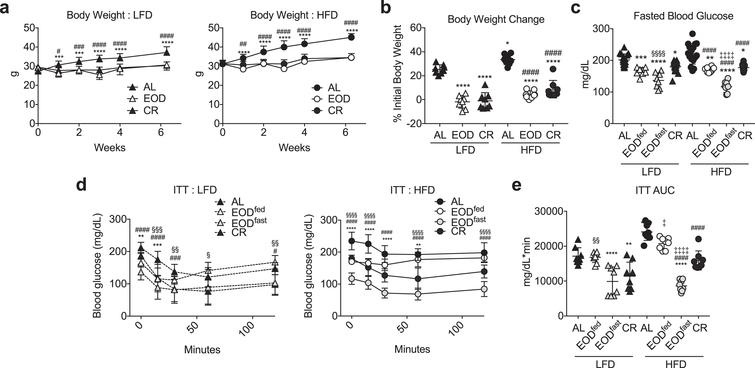 Effects of EOD fed or fasted day on glucose homeostasis. (a) Time-dependent changes in body weight over 6 weeks of the indicated dietary regimen on LFD (left) or HFD (right). Asterisk: AL vs. EOD; pound sign: AL vs. CR within diet group using repeated measures two-way ANOVA with a Dunnett's post-hoc test. (b) Final body weight expressed as a percent change of initial body weight. Asterisk: comparison of all groups to AL LFD; pound sign: comparison of HFD groups to AL HFD using one-way ANOVA with a Sidak's post-hoc test; (c) Fasted blood glucose following the indicated dietary interventions, with EOD groups assessed after fed or fasting days as indicated. (d, e) Insulin tolerance test. Time-dependent changes in blood glucose (d: LFD left, HFD right) and AUC (e) following a bolus injection of insulin to animals on the indicated diets for 6 weeks. (d) Asterisk: AL vs. EODfed; pound sign: AL vs. EODfast; squiggle: AL vs. CR, using repeated measures two-way ANOVA within diet with a Dunnett's post-hoc test. (c, e) Asterisk: comparison of all groups to AL LFD; pound sign: comparison of HFD groups to AL HFD; squiggle: comparison between EOD groups and CR within LFD; double cross: comparison between EOD groups and CR within HFD using one-way ANOVA with a Sidak's post-hoc test; */#/‡/§P < 0.05, **/# #/‡‡/§§P < 0.01, ***/# # #/‡‡‡/§§§P < 0.001, ****/# # # #/‡‡‡‡/§§§§P < 0.0001. All data are expressed as mean±SD.