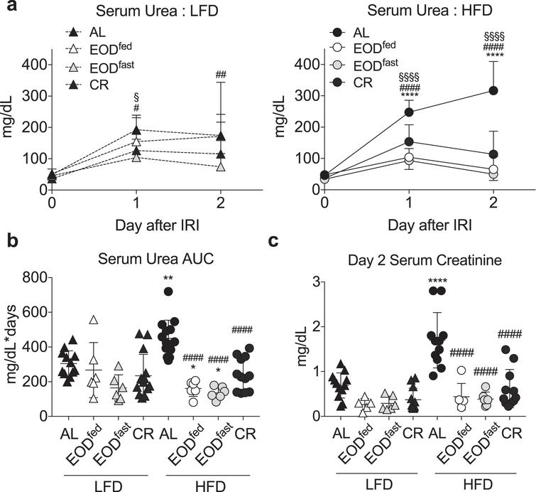 Effects of EOD fed or fasted day on susceptibility to renal ischemia reperfusion injury. (a-c) Serum urea over the first 2 days following renal ischemia reperfusion injury in mice preconditioned for 6 weeks on the indicated diet and feeding regimen. (a) Daily serum urea in the indicated diet groups (LFD, left; HFD, right). Asterisk: AL vs. EODfed; pound sign: AL vs. EODfast; squiggle: AL vs. CR using repeated measures two-way ANOVA within diet with a Dunnett's post-hoc test. (b) Area under the curve (AUC) of serum urea from (a). (c) Serum creatinine on day 2 after surgery. (b, c) Asterisk: comparison of all groups to AL LFD; pound sign: comparison of HFD groups to AL HFD using one-way ANOVA with a Sidak's post-hoc test. */#/‡/§P < 0.05, **/# #/‡‡/§§P < 0.01, ***/# # #/‡‡‡/§§§P < 0.001, ****/# # # #/‡‡‡‡/§§§§P < 0.0001. All data are expressed as mean±SD.