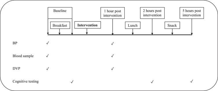 Test day timeline. BP: Blood pressure; DVP: Digital Volume Pulse.