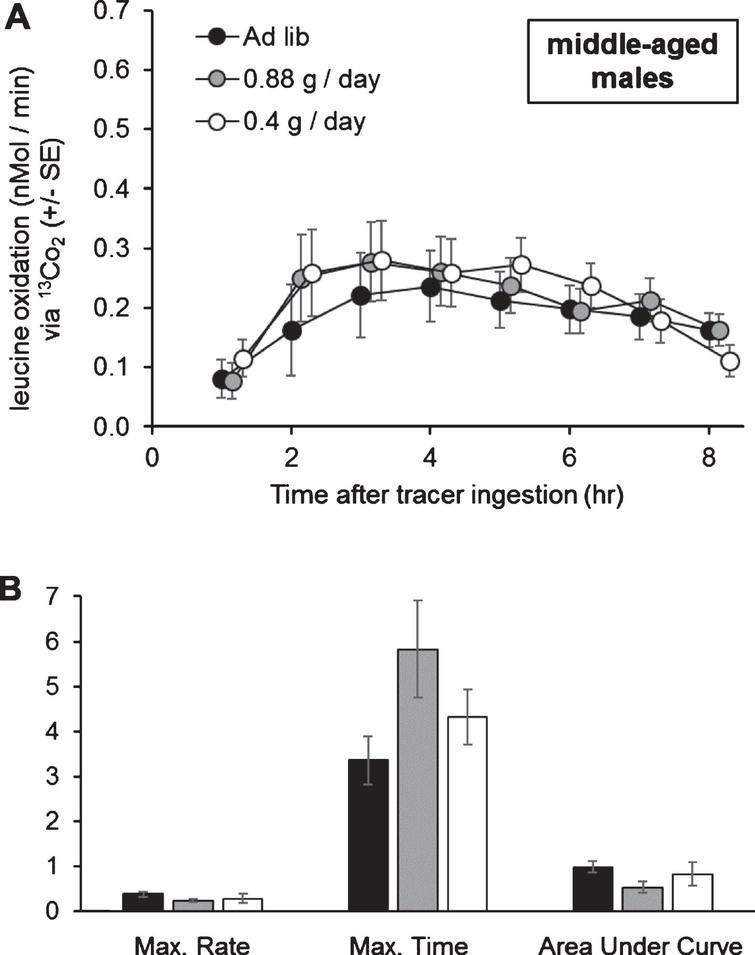 Organismal oxidation of leucine upon 0.4g/day, 0.88g/day, or ad libitum lettuce feeding, in middle-aged male grasshoppers. A) Diet level did not affect leucine oxidation at any point tested. B) Diet level did not affect the maximum rate of leucine oxidation (nMol / min), the time of occurrence of the maximum rate of leucine oxidation (hours after tracer ingestion), or the Area Under the Curve (nMol / min * 100). Oxidation curve data were tested with one-way MANOVA with time as a dependent variable, and oxidation parameters were tested with one-way MANOVA. Error bars show one Standard Error.
