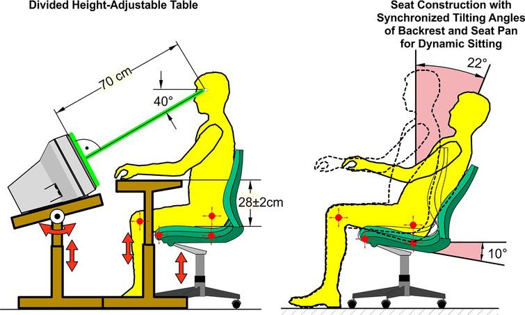 Divided height-adjustable table for the individual adaptation to manual and visual working height enabling an orthogonal top view and a suitable viewing distance (left part) and compatibility between the anatomical knee and hip joints and the functional joints of the seat pan and backrest in chairs with synchronous technique (right part).