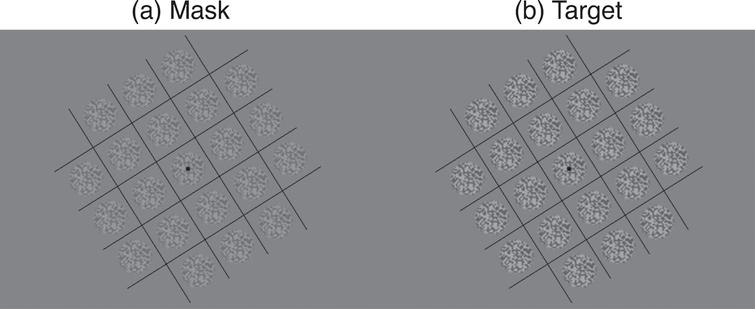 Example stimuli used in experiments. Mask (a) and target (b) were patches of static white noise windowed by a raised cosine envelope. The patches were tiled in a 5×5 grid, surrounded by a series of orthogonal lines to aid binocular fusion. The orientation of the grids was varied randomly from trial to trial to minimise local adaptation.