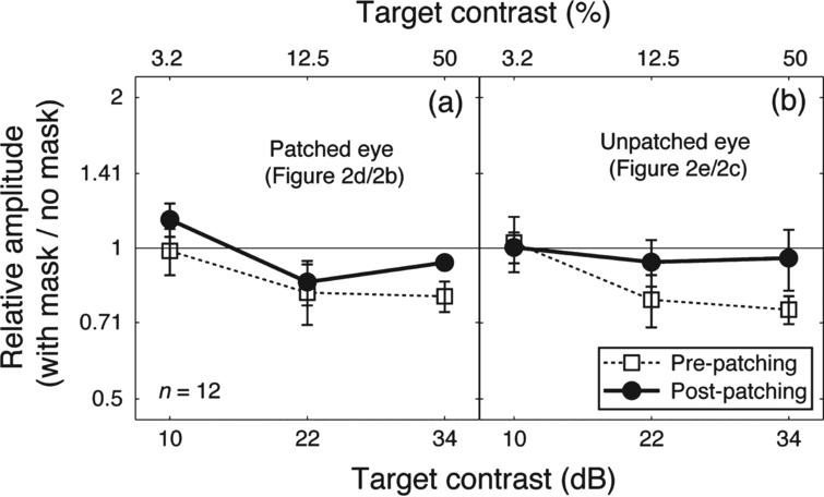 The dichoptic masking effect on SSVEP amplitudes at the target frequency. Relative SSVEP amplitude (with mask/no mask) plotted against target contrast for the patched eye (a) and unpatched eye (b). Points lower than the middle identity line indicate dichoptic masking effects of the mask on SSVEP amplitudes at the target frequency. Error bars give±1 standard error across observers (n=12).